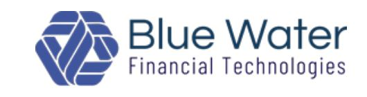 Blue Water Financial Technologies has developed an electronic co-issue pricing and trading platform, MSR-X for co-issuing purposes that allows lenders and investors to view portfolios and transactional data in real-time